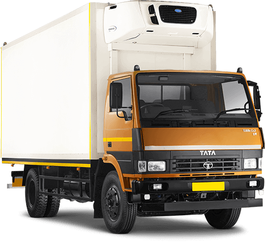 Tata 1109 Truck RH Side Container