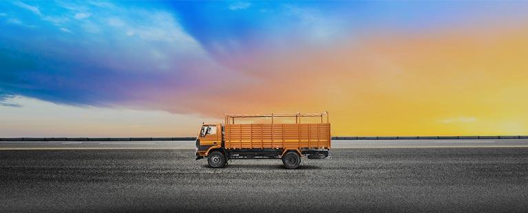 Tata 1109 Flat Side
